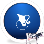 Dairy iconB